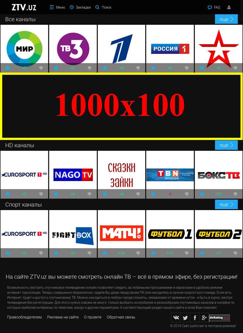 1000x100